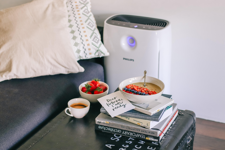 Allergien: Was hilft wirklich? Meine Wohlfühltipps für Zuhause